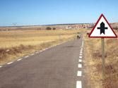 A la vista de la señal, ¿tienen preferencia de paso los animales domésticos cuando crucen la calzada? 1