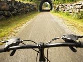 Un ciclista ha consumido estupefacientes, ¿puede circular? 1