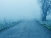 Hay mucha niebla. ¿Qué luces deben llevar encendidas los vehículos? 1